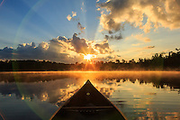 """""""Canoe Country Radiance I""""<br /> <br /> A tranquil sunrise streaming through the clouds as viewed from my canoe gives rise to corpuscular rays, camera lens flare, and illuminated fog making this one of my favorite shots. Basswood Lake, Pipestone Bay in the BWCAW."""