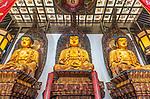 China, Shangahi, Jade Buddha Temple Buddhas