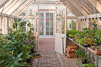 Greenhouse with plants, bench, seedlings of vegetables, herbs, flowers