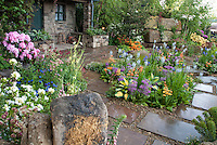 Spring flower garden with rhododendrons and azales, stone shed or house, stone patio and walkway, Primula, rock wall, hosta,