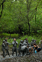 Milhares de moradores entram no mangue e começam a se sujar de lama antes de tomar as ruas da cidade em um carnaval ecológico. A idéia que iniciou há 20 anos atrás quando alguns moradores perceberam que as espécimes do manguezal estavam desaparecendo.<br /> 22/02/2009.<br /> Curuçá, Pará, Brasil.<br /> Foto Paulo Santos