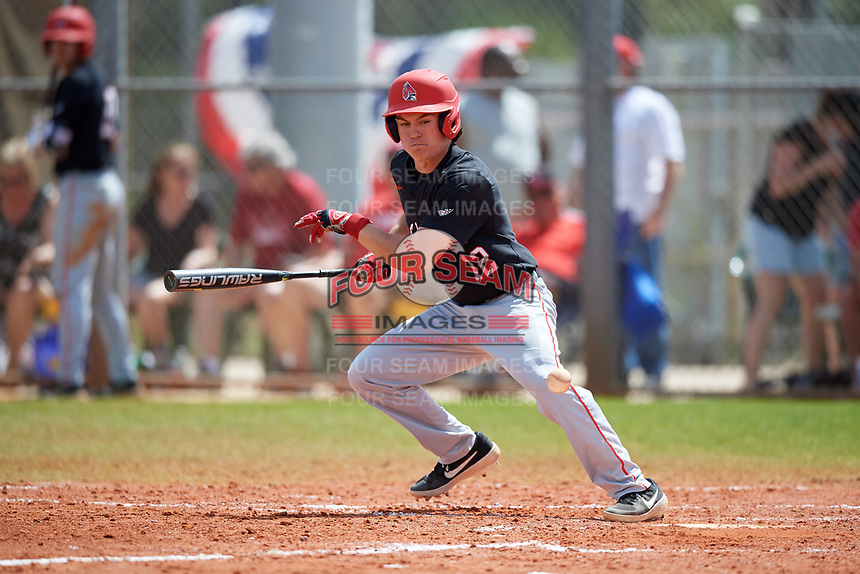 Ball State Cardinals left fielder Mack Murphy (12) bunts during a game against the Saint Joseph's Hawks on March 9, 2019 at North Charlotte Regional Park in Port Charlotte, Florida.  Ball State defeated Saint Joseph's 7-5.  (Mike Janes/Four Seam Images)
