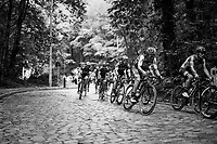 working the cobbles<br /> <br /> 97th Brussels Cycling Classic (1.HC)<br /> 1 Day Race: Brussels > Brussels (201km)