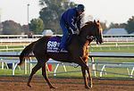 October 23, 2015:  Undrafted, trained by Wesley Walker, and owned by Welker, Wes, and Kumin, Sol.   Candice Chavez/ESW/CSM