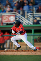 Batavia Muckdogs Milton Smith II (33) bunts during a NY-Penn League game against the Auburn Doubledays on June 14, 2019 at Dwyer Stadium in Batavia, New York.  Batavia defeated 2-0.  (Mike Janes/Four Seam Images)