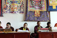 Young Tibetan monks recite texts in a monastery in the town of Zaduo on the Tibetan Plateau, in western China.