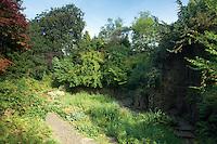 Fossil Grove, Victoria Park, Glasgow