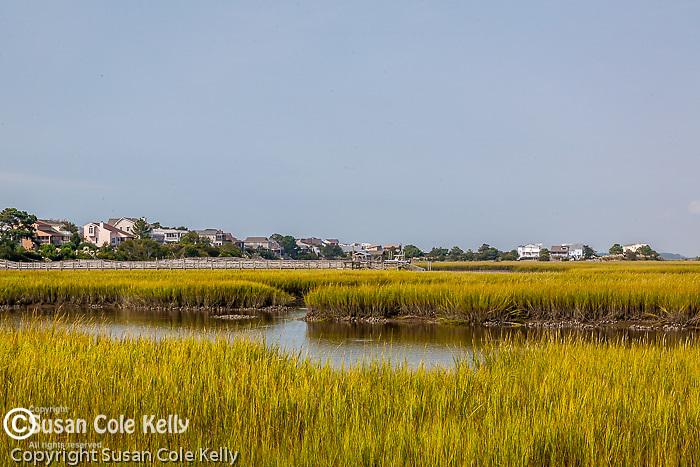Saltwater marsh on the Interstate waterway, Sunset Beach, Brunswick County, NC