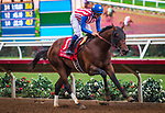 DEL MAR, CA - AUGUST 12: Run Away #1, ridden by Flavien Prat wins the Grade II Best Pal Stakes at Del Mar Thoroughbred Club on August 12, 2017 in Del Mar, California.  (Photo by Zoe Metz/Eclipse Sportswire/Getty Images)