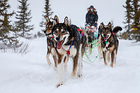 Emily Maxwell's team runs on the trail just priort to the Iditarod checkpoint on Friday, March 9th during the 2018 Iditarod Sled Dog Race -- Alaska<br /> <br /> Photo by Jeff Schultz/SchultzPhoto.com  (C) 2018  ALL RIGHTS RESERVED