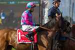ARCADIA, CA MARCH 18: #1 Autumn Flower, ridden by Martin Pedroza, in the post parade before  the  Santa Margarita Stakes (Grade 1) on March 18, 2017, at Santa Anita Park in Arcadia, CA. (Photo by Casey Phillips/Eclipse Sportswire/Getty Images)