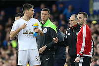 Swansea City Head Coach Francesco Guidolin issues instructions to Frederico Fernandez as he stands in the technical area during the Barclays Premier League match between Everton and Swansea City played at Goodison Park, Liverpool