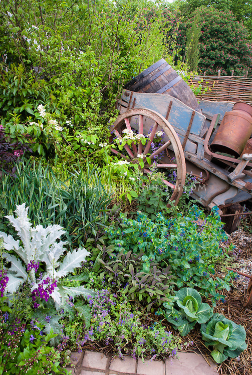 Old farm cart, tools, barrels for garden ornaments, vegetables and herbs and flowrs all mixed in the same garden together, charming and rustic