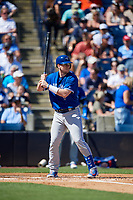 Toronto Blue Jays catcher Danny Jansen (9) at bat during a Grapefruit League Spring Training game against the New York Yankees on February 25, 2019 at George M. Steinbrenner Field in Tampa, Florida.  Yankees defeated the Blue Jays 3-0.  (Mike Janes/Four Seam Images)