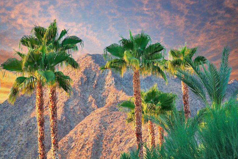 Palm trees and San Jacinto Mountains. California. Sky has been added.