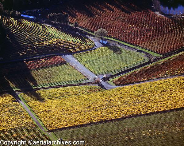 aerial photograph Napa Valley vineyards in the fall, Napa County, California