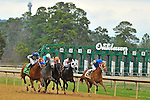 Junebugred (right) leads a tight field down the home stretch during the 5th running of the Smarty Jones at Oaklawn Park on Monday. Ridden by Joe Bravo, and trained by Steve Hobby, the Kentucky bred colt won by a photo finish over Reckless Jerry (left).
