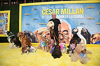 """LOS ANGELES - JULY 30:  Cesar Millan attend sthe premiere event for National Geographic's """"Cesar Millan: Better Human, Better Dog"""" at the Westfield Century City Mall Atrium on July 30, 2021 in Los Angeles, California. (Photo by Stewart Cook/National Geographic/PictureGroup)"""