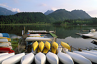 Pitt Lake near Pitt Meadows and Maple Ridge, BC, British Columbia, Canada - Canoe Boat Rental at Grant Narrows Regional Park - Coast Mountains, Fraser Valley