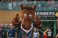 London Broncos mascot, Buck, celebrates after victory in the Kingstone Press Championship match between London Broncos and Sheffield Eagles at Castle Bar , West Ealing , England  on 9 July 2017. Photo by David Horn.