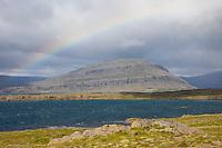 Fjord und Tundra im Osten von Island, Ostisland mit Regenbogen, rainbow