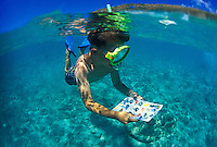 Young boy snorkels with fish ID card at Hanauma bay, Island of Oahu