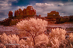 Wooden Shoe Arch, Canyonlands National Park, Utah (Infrared)
