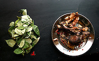 Pieces of cooked llama on a plate next to coca leaves on a table on the Hacienda Cotochullpa at the Carnaval de Oruro. During the fiesta many people sacrifice llamas and give offerings such as coca leaves and cigarettes to show their dedication to the Devil, a Virgin, Pachamama or Mother Earth. The Devil (or Uncle) is a mythical character that protects the miners of Oruro who work in dangerous conditions hundreds of metres below the ground. During the carnival, people dress in outrageous costumes and dance for days before arriving at the Church of Socavon, where they pay their respects to a virgin. Ironically, many of the dancers wear devil costumes.