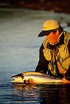 Atlantic Salmon release