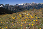 Wallowa Mountains in Oregon.
