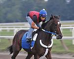 8.20.10 Rachel Alexandra in her daily gallop around the Oklahoma Training Track