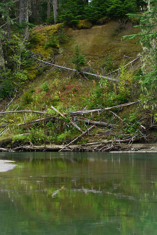 The bank of the Mitchell River in early fall