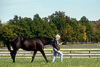 Mature woman leading horse through field