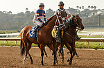 DEL MAR, CA  AUGUST 22 : #3 Lieutenant Dan, ridden by Geovanni Franco, in the post parade of the Green Flash Handicap (Grade lll)   at Del Mar Thoroughbred Club in Del Mar, CA  (Photo by Casey Phillips/Eclipse Sportswire/CSM)