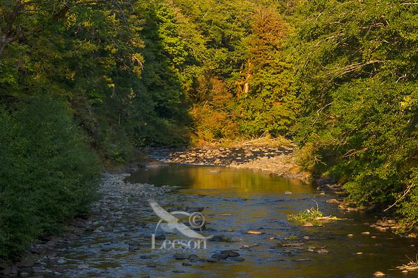 Sol Duc River.  Olympic Peninsula, Washington.  Sept.