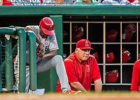 15 August 2017: Los Angeles Angels Manager Mike Scioscia watches play from the dugout during a game against the Washington Nationals at Nationals Park in Washington, DC. The Nationals defeated the Angels 3-1 in the first game of their 2-game series. Mandatory Credit: Ed Wolfstein Photo *** RAW (NEF) Image File Available ***