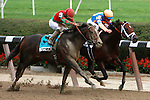 Flat Out, ridden by Joel Rosario, wins the TVG Jockey Club Gold Cup Invitastional Satkes (GI) at Belmont Park, In Elmont, New York on September 29, 2010.