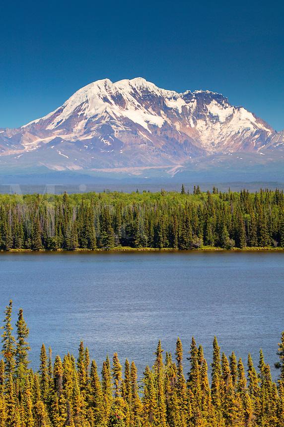 Mount Drum in the Wrangell Mountains from Willow Lake, Wrangell Saint Elias National Park and Preserve, Alaska