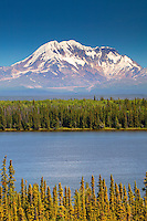 Mount Drum in the Wrangell Mountains from Willow Lake, Wrangell Saint Elias National Park and Preserve, Alaska
