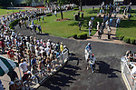 Cozzetti (grey) won the American Derby (G3) Saturday afternoon at Arlington Park with jockey Shaun Bridgmohan aboard.