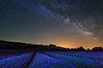 Pictured: The Milky Way against a lavender field in Provence, France <br /> <br /> This beautiful series of photographs shows the Milky Way as seen from different continents around the world.   Photographer Hua Zhu travelled the globe over the course of four years to capture the starry night sky from already stunning locations. <br /> <br /> The medical professor visited picturesque landmarks in the USA, Kenya, New Zealand and China, including the Great Wall in Beijing.  Chinese Dr Zhu, who lives in New Jersey, USA, said he meticulously planned the trips by researching when the Milky Way would be on show.   SEE OUR COPY FOR DETAILS<br /> <br /> Please byline: Hua Zhu/Solent News<br /> <br /> © Hua Zhu/Solent News & Photo Agency<br /> UK +44 (0) 2380 458800