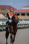 AUG ,2014:Enterprising,ridden by Mike Smith,wins the La Jolla Handicap at Del Mar in Del Mar,CA. Kazushi Ishida/ESW/CSM