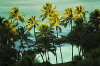 Palm trees and ocean at first light. Ko Olina, Oahu, Hawaii