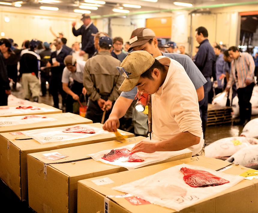 Inspecting tuna at Tsukiji Fish Market