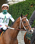 October 10, 2020: Nashville, trained by Steve Asmussen, wins Race 5, Allowance, at Keeneland on October 10, 2020 in Lexington, KY. Jessica Morgan/ESW/CSM