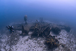 """The wreck of the B24 Liberator """"Tulsamerican"""", Vis, Croatia, which lies between 40 and 55 metres"""