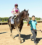 July 05, 2014: Clearly Now with Jose Lezcano win the 7th running of the Grade III Belmont Sprint Championship Stakes for 3-year olds & up, going 7 furlongs at Belmont Park. Trainer: Brian Lynch. Owner: Uphill Stable . Sue Kawczynski/ESW/CSM