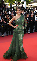 Iris Mittenaere<br /> The Beguiled' Red Carpet Arrivals - The 70th Annual Cannes Film Festival<br /> CANNES, FRANCE - MAY 24 attends the 'The Beguiled' screening during the 70th annual Cannes Film Festival at Palais des Festivals on May 24, 2017 in Cannes, France