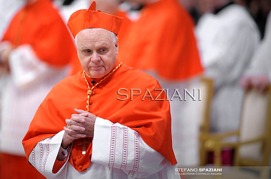 cardinal Edwin Frederick O'Brien,.., Pope Benedict XVI leads the Consistory where he will appoint 22 new cardinals on February 18, 2012 at St Peter's basilica at the Vatican.