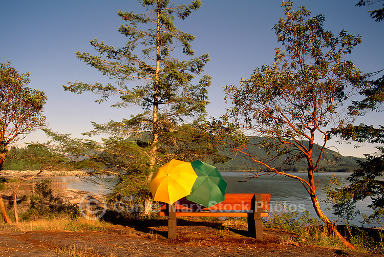 Two Umbrellas on Bench at Mermaid Cove, Saltery Bay Provincial Park, near Powell River on the Sunshine Coast, British Columbia, Canada